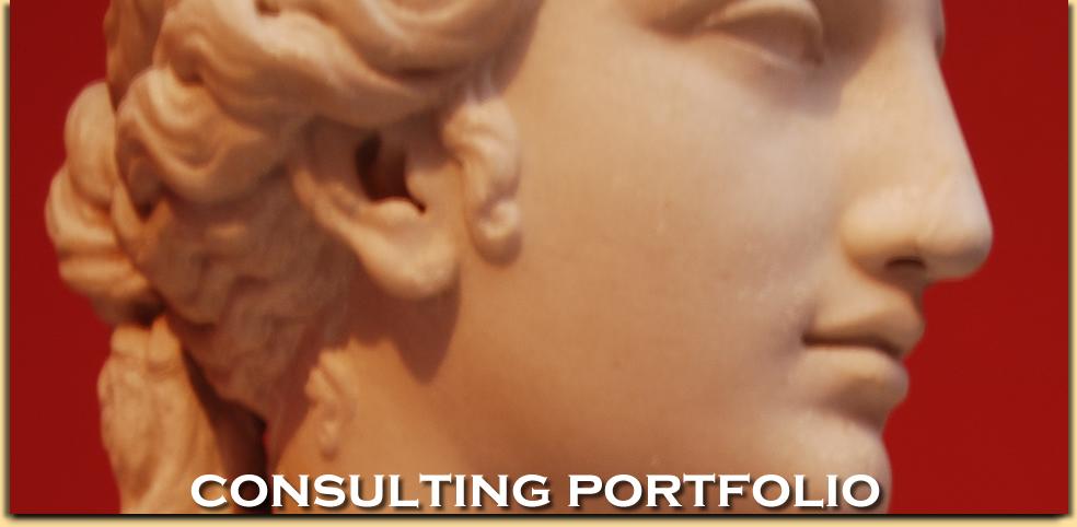 Consulting Portfolio