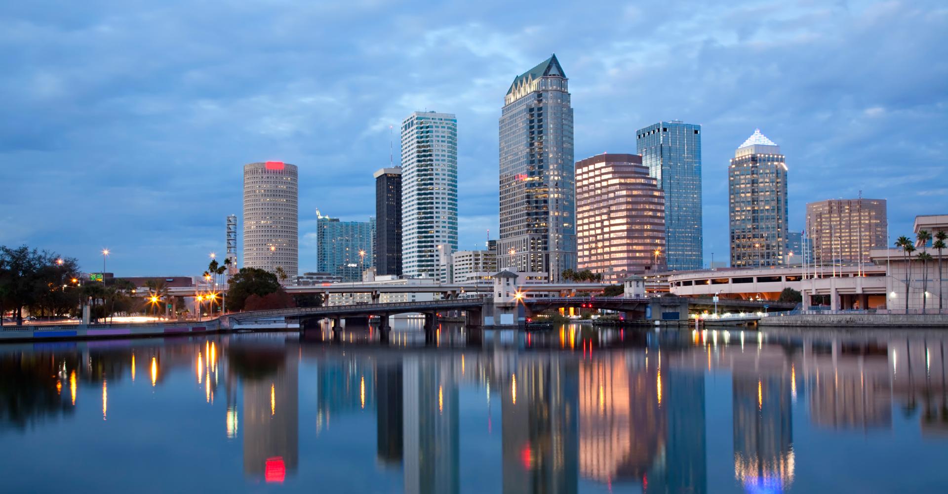 SEO, Web Design, Online Reputation Management Tampa
