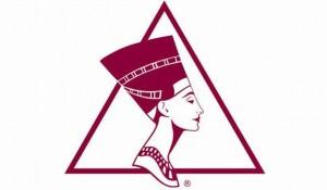 mediasophia-aesthetic-society-logo2